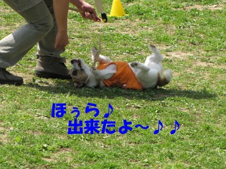 縺励▽縺・3_convert_20100415234057[1]