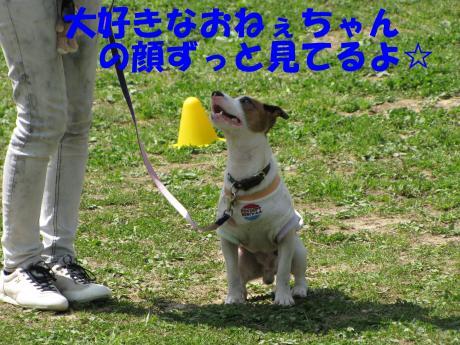 縺励▽縺・3_convert_20100415233607[1]