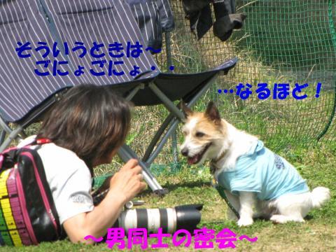 縺励▽縺・2_convert_20100418225409[1]
