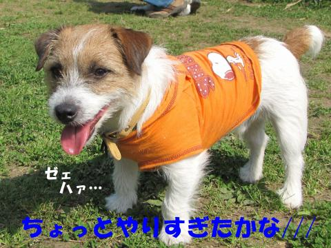 縺励▽縺・3_convert_20100418225838[1]