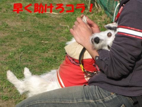 縺励▽縺・6_convert_20100418225938[1]
