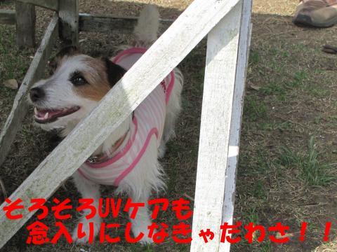 縺励▽縺・9_convert_20100418230035[1]