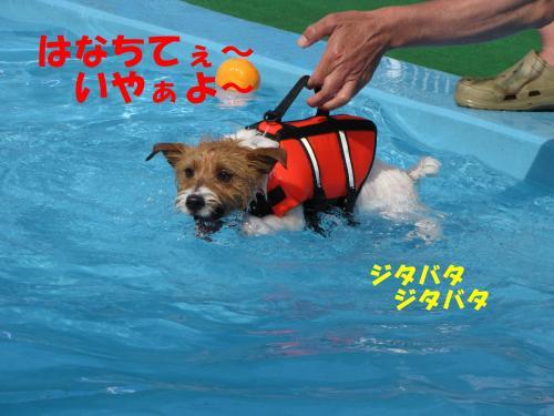 繝励・繝ォ10_convert_20100516225053[1]