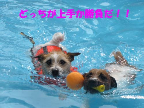 繝励・繝ォ7_convert_20100516224924[1]