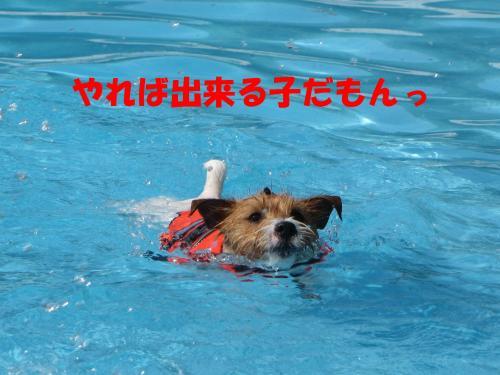 繝励・繝ォ11_convert_20100516225150[1]