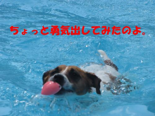 繝励・繝ォ14_convert_20100516225250[1]