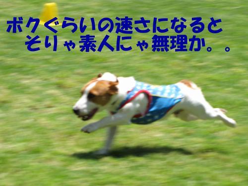 襍ー繧・1_convert_20100608222132[1]