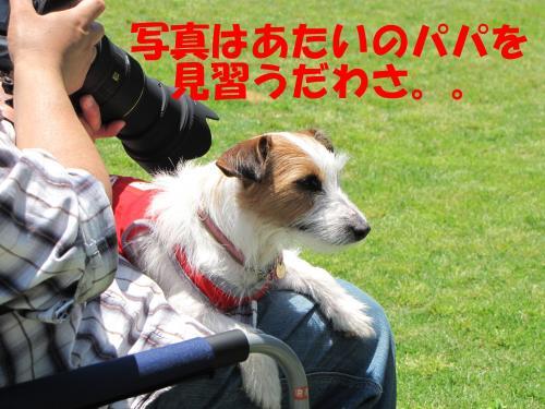 襍ー繧・3_convert_20100608222221[1]