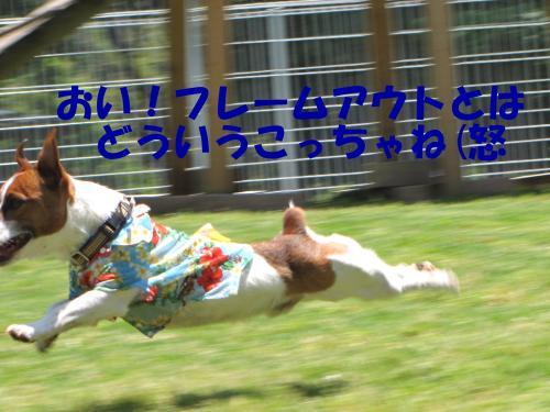 襍ー繧・0_convert_20100608222112[1]
