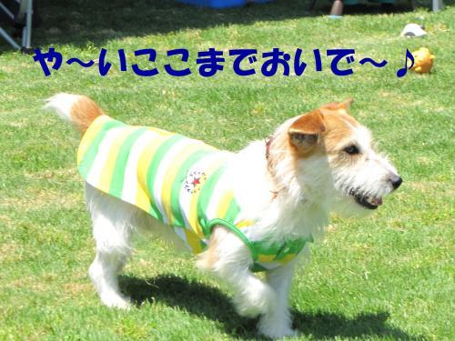 襍ー繧・_convert_20100608221840[1]