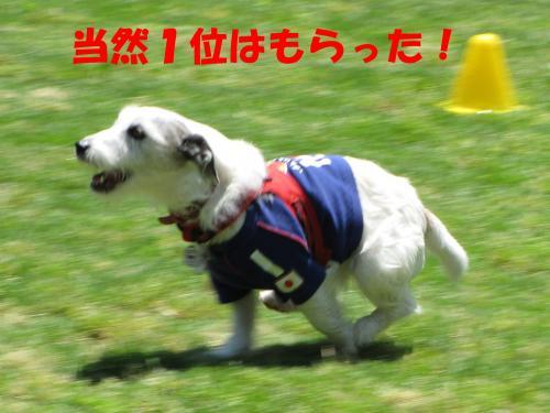 襍ー繧・_convert_20100608221712[1]