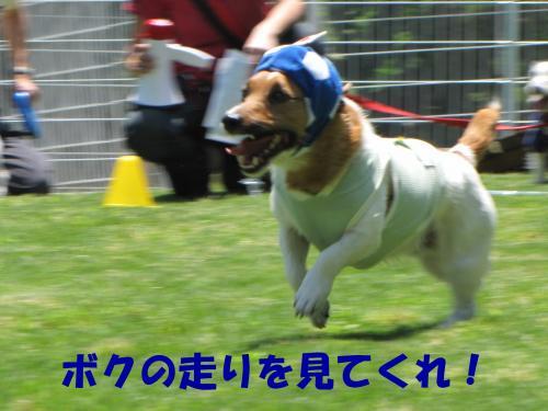 襍ー繧・_convert_20100608221731[1]
