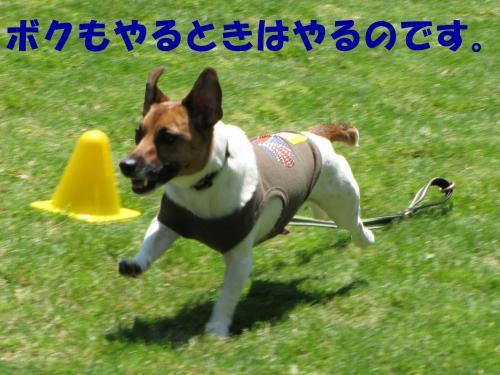 襍ー繧・_convert_20100608221817[1]