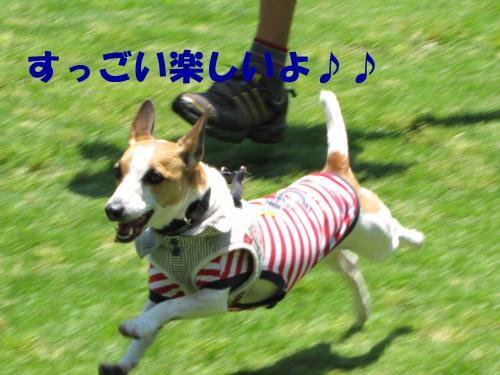 襍ー繧・_convert_20100608221758[1]