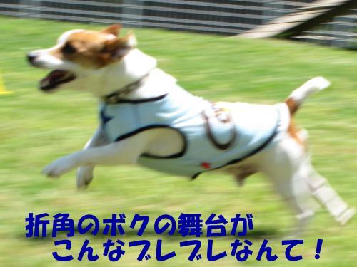 襍ー繧・_convert_20100608221927[1]
