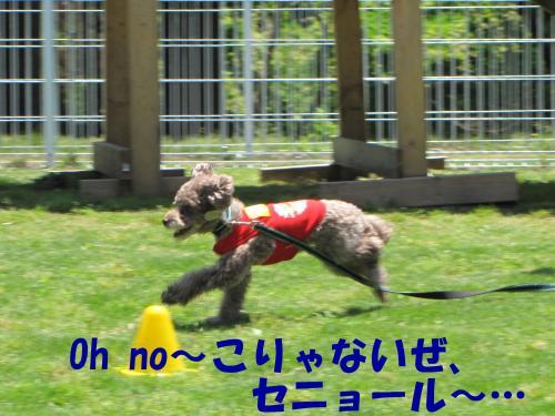 襍ー繧・4_convert_20100608224922[1]