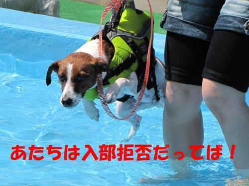 繝励・繝ォ10_convert_20100615215722[1]