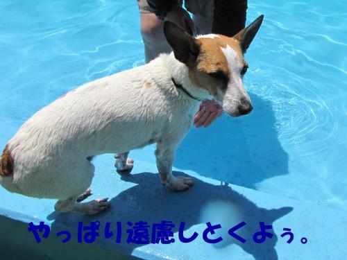 繝励・繝ォ7_convert_20100615215624[1]