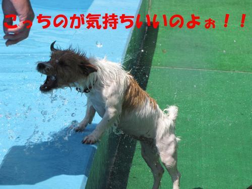 繝励・繝ォ14_convert_20100615215844[1]