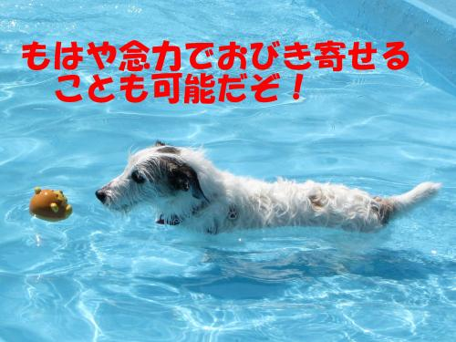 繝励・繝ォ16_convert_20100615215934[1]