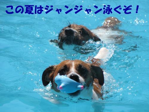 繝励・繝ォ21_convert_20100615220117[1]