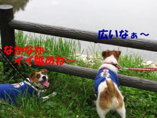 雋峨・_convert_20100620215432[1]_convert_20100620220507[1]