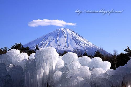 野鳥の森公園樹氷