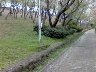 急な登り坂(左側)