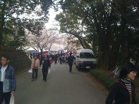 2010年03月28日田代公園花見03