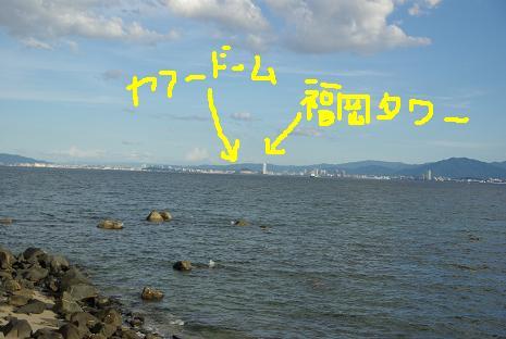 2010082813.jpg