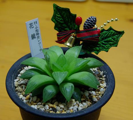 hanakagami0912.jpg