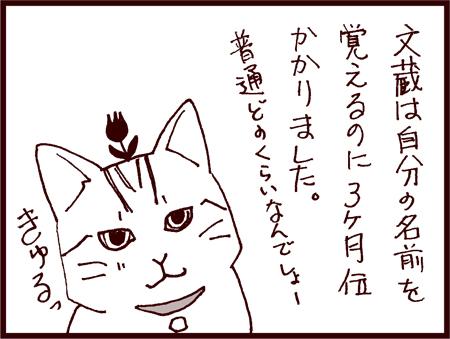 vol4_001.jpg