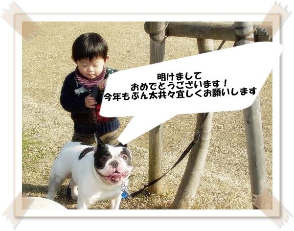 1_20100106001011.jpg