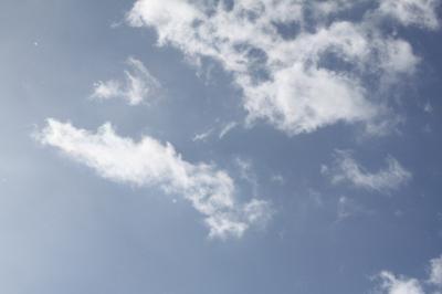 20101231-1.jpg