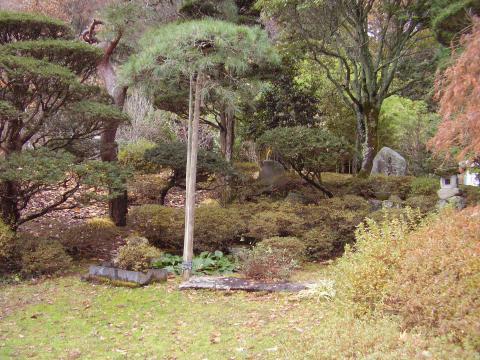 400年の坪庭
