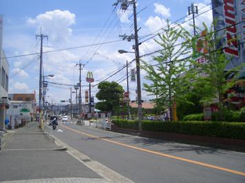 katanosieki 4