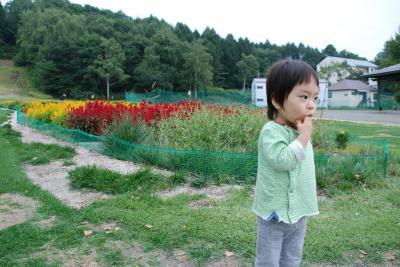 DSC_0002_convert_20111008001357.jpg