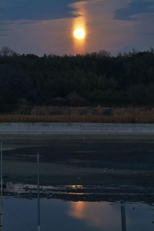ねぐら池の月光柱