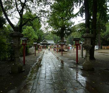 saitama washinomiya jinjya 02 20110904_R