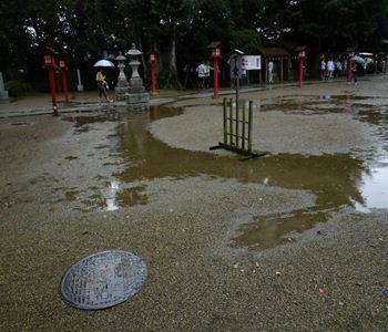 saitama washinomiya jinjya05 20110904_R