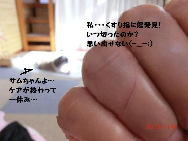 006_20131108140647052.jpg