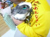 snap_wankosyoukai_201012223744.jpg