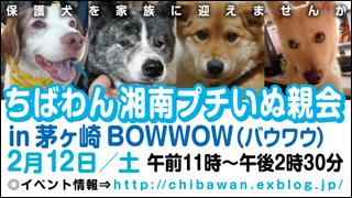 20110212_chigasaki_320x180.jpg