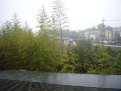 雨20131125