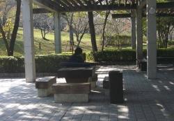 鏡山公園20131029-3