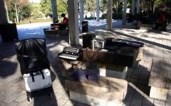 アコーディオンの練習鏡山公園20131123-1