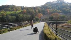 鏡山公園でアコの練習20131124-2