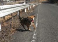 散歩20100127-1