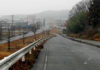 散歩20100131-2