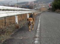 散歩20100225-2